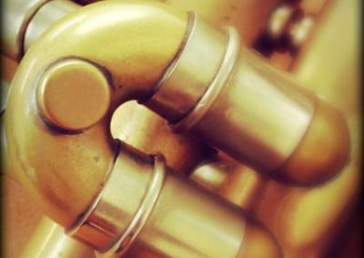 Detall de la meva trompeta Van Laar